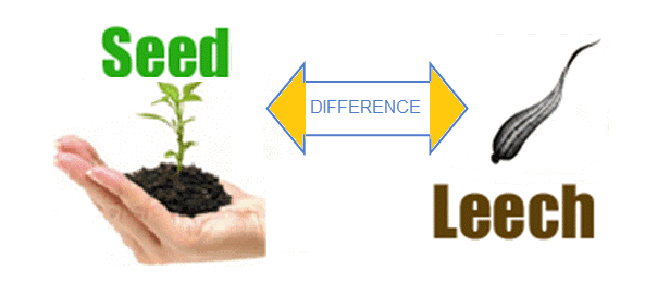 what are seeders and leechers on utorrent