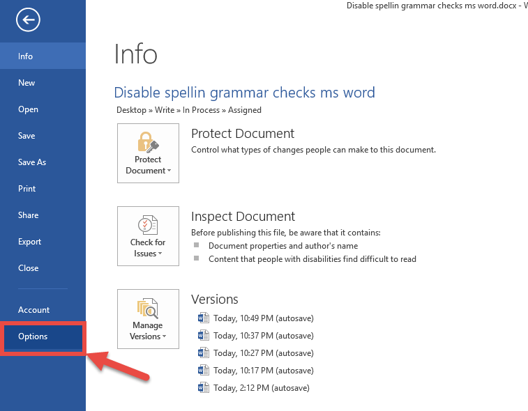 ms word options panel