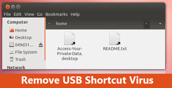 How to recover USB drive files and folders shortcut link virus with Ubuntu